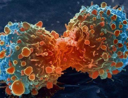 Les scientifiques guérissent le cancer, mais personne n'y prête attention